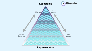 Leadership vs representation triangle