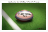 """Cartoon: Rod Emmerson """"Can someone pick up the ball and run with it, please..."""""""